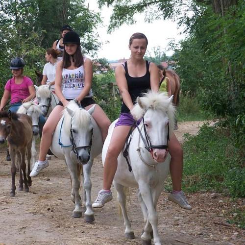 Vyjížďky na koních 03